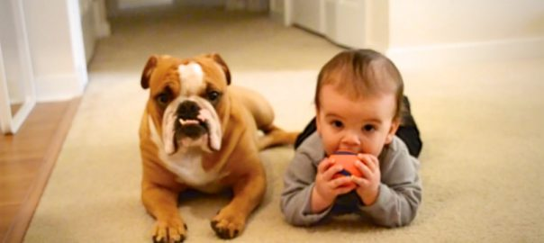 babies stealing things