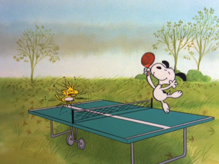 SAMMY: That's a ping-pong table. He thought it wasn't.