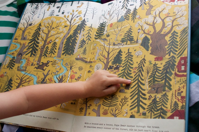 The Bear's Song finding animals